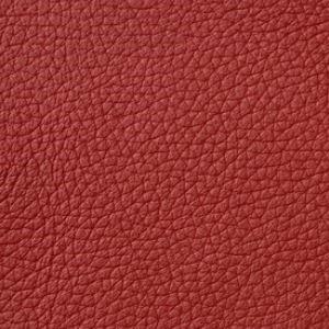 Leder red
