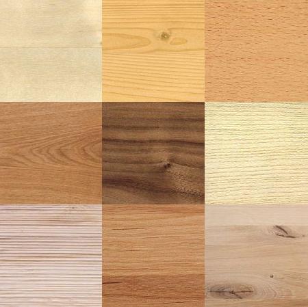 Möbel Holzarten regal regal nach holzarten günstig kaufen möbel universum