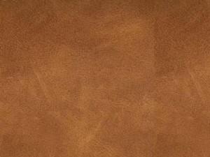 Skin Cognac 28