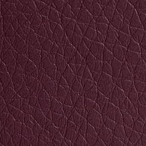 Kul violet 304 (PG 2)